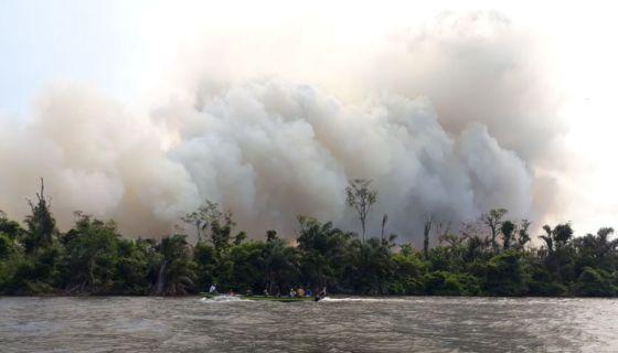Indio Maíz, incendios