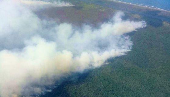 El incendio forestal que consume la Reserva Indio Maíz ha arrasado con 4,600 hectáreas de bosque, según los puntos de calor de los satélites Modis y VIIRS de la Nasa. LA PRENSA/ Cortesía Fundación del Río
