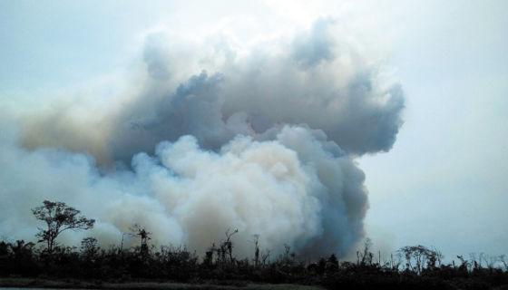 Incendio en la Reserva Indio Maíz, Indio Maíz, reserva indio maíz