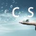 """Explore las excepciones y numerosos usos de la """"c"""" y la """"s"""""""