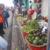 Comerciantes de Niquinohomo, Masaya, viajan a Granada a vender sus productos