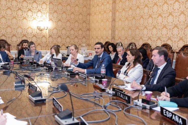 OEA, consejo permanente, crisis, Nicaragua