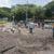 Ponen adoquines nuevos en acceso a la Unan-Managua, que está tomada por paramilitares