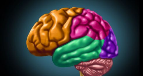 La música es uno de los mayores estímulos que puede recibir el cerebro. LA PRENSA/ THINSTOCK