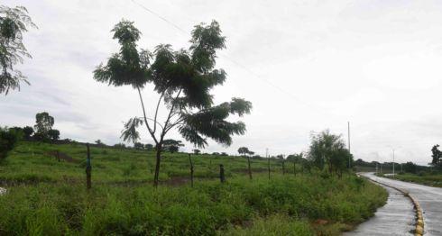 Nuevo cementerio de Managua