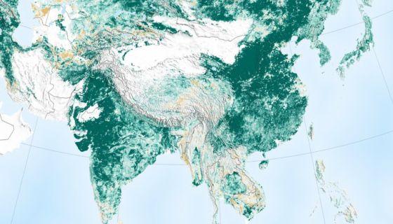 Las imágenes de la NASA muestran que hoy el planeta es más verde.NASA