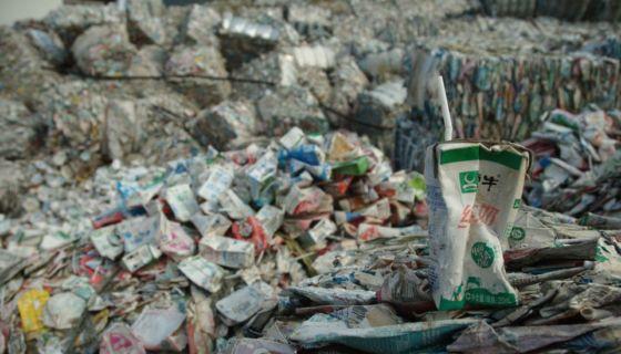 basura, medio ambiente