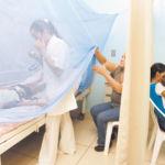 Dengue suma 24 muertes en Nicaragua en lo que va del año, reporta Rosario Murillo