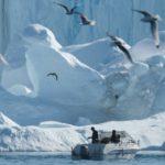 Por qué la remota Groenlandia es atractiva para Trump (y también para China)
