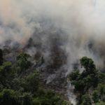 Incendios en el Amazonas: el número récord de fuegos que afectan a Brasil y también arrasan otros países de Sudamérica