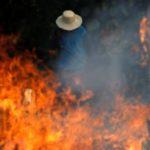 #PrayForAmazonas: los incendios en el Amazonas se convirtieron en primera tendencia mundial en Twitter