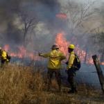 Bolivia y Paraguay unen esfuerzos para apagar incendios forestales