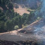 Presidente de Brasil insinúa que oenegés provocaron los incendios en la Amazonía
