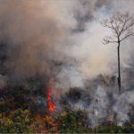 Bolsonaro alista tropas para combatir el creciente número de incendios en la Amazonía