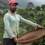 Cambio climático: la razón por la que se prevé migrarán millones de Centroamérica y México