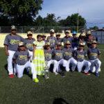 Nuevas Estrellas, una opción deportiva para los peloteritos