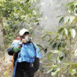 Siembra agrícola de Nicaragua dejó de recibir 220,000 quintales de fertilizantes en el 2019, cuyos efectos se sentirán en 2020