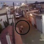 Autoridades arrestan a presuntos responsables del secuestro y asesinato de una niña de siete años en México