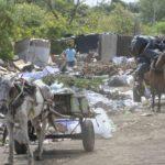 Managua convertida en un «chiquero». Alcaldía mantiene basureros públicos atestados durante días