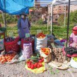 La pandemia en los campos de América Latina: olvido, pobreza y pérdidas