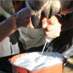 Productores de lácteos en Nicaragua preocupados por crisis con Costa Rica y riesgos en El Salvador