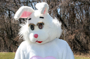 A person in a bunny costume delights children during a easter egg hunt. that is one big bunny (Photo credit: Susan Sheldon/Dreamstime)