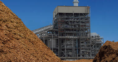 Austin Energy reaches deal to acquire East Texas biomass plant