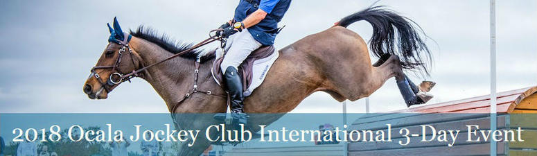 World-class, Olympic-level cross country equestrian competetion