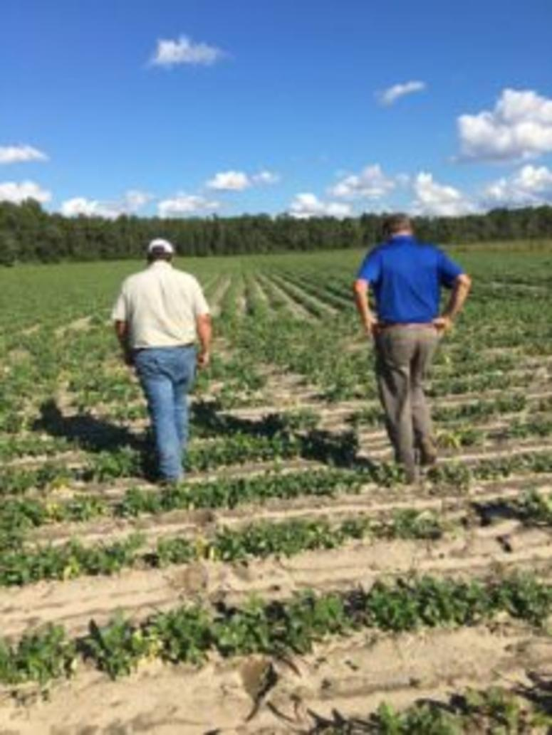 SC Agriculture Commissioner Hugh Weathers reviews damage after Hurricane Florence