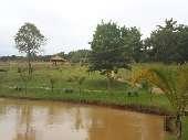Lago (4)