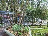 Jardim do prédio
