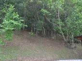 4.arborização
