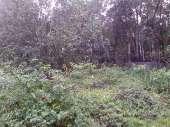 CH�CARA NA CANTAREIRA ZN, SP