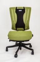 BackBone Office/Car Cushion 17