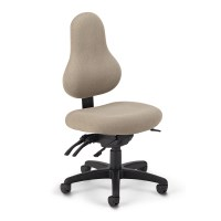 OM Discovery Low Back Chair