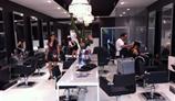 Zebu Hair gallery image 1