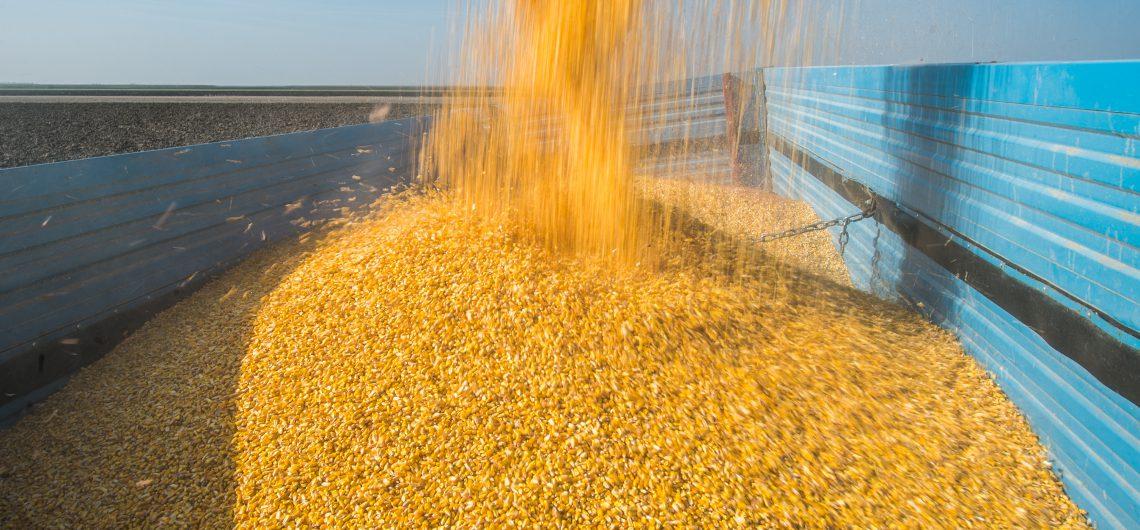 harvest-grainsolutions