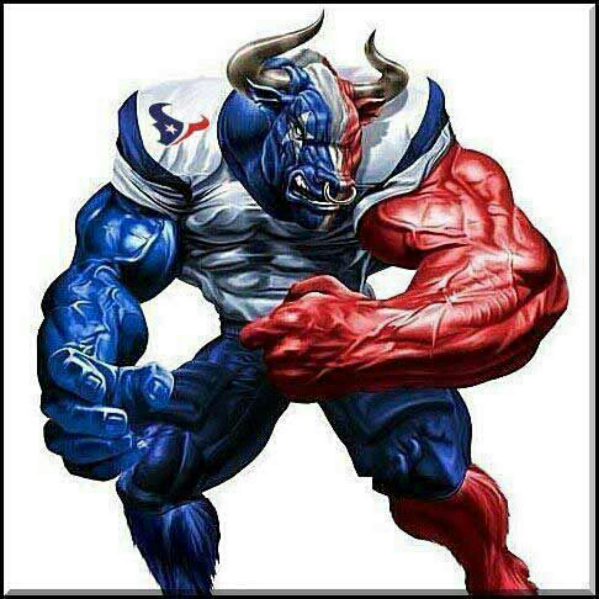 KJSportsFan1997 posted a picture and said: Come On Texans ...