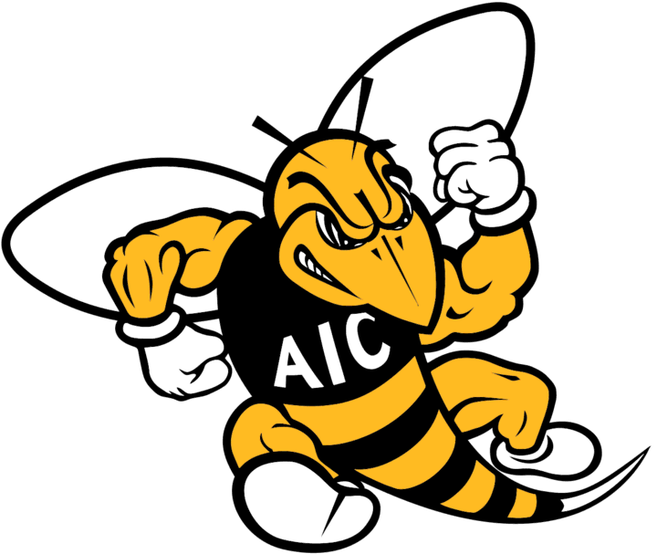 The American Intl College Yellow Jackets