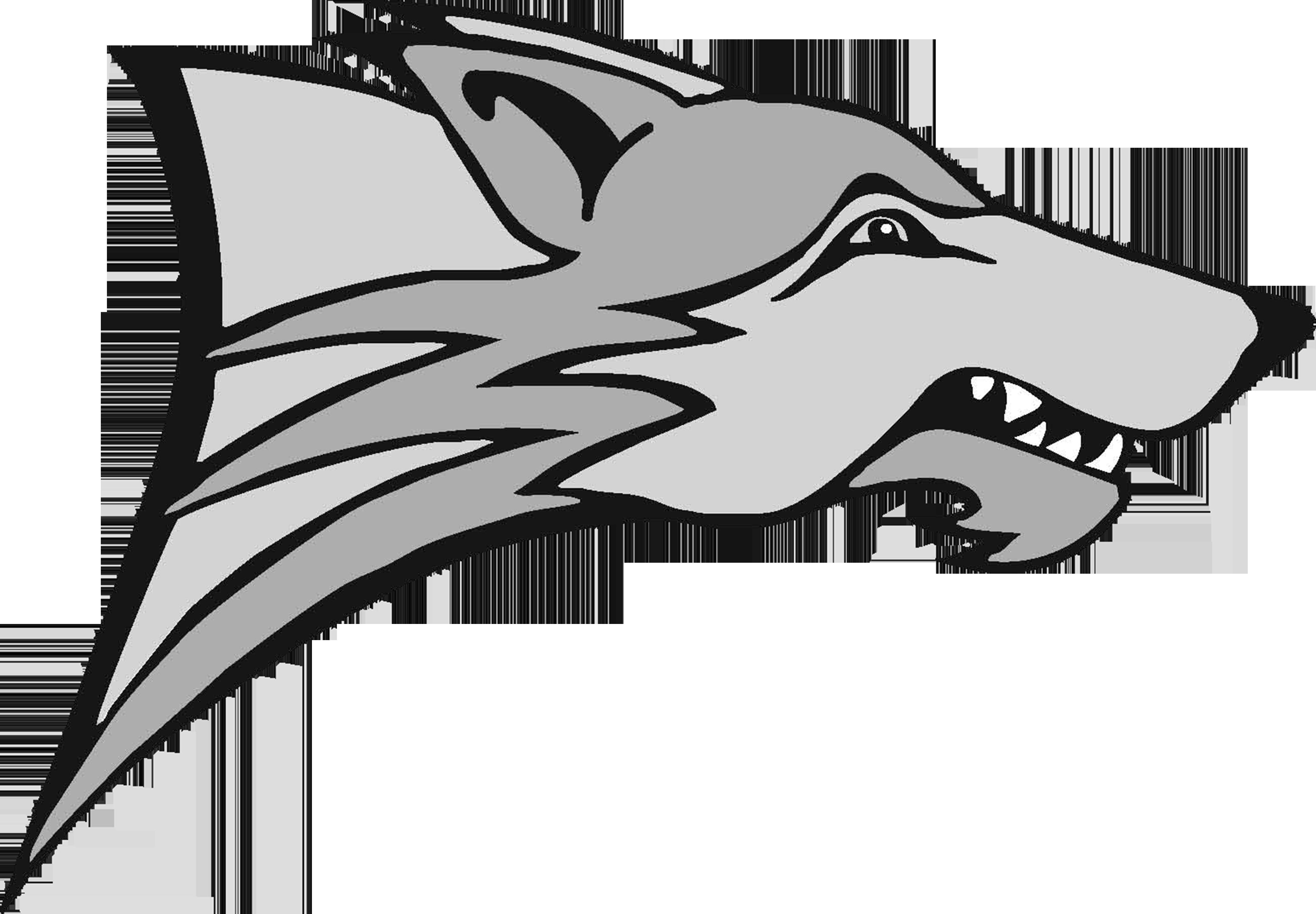 The Pinnacle Timberwolves Scorestream