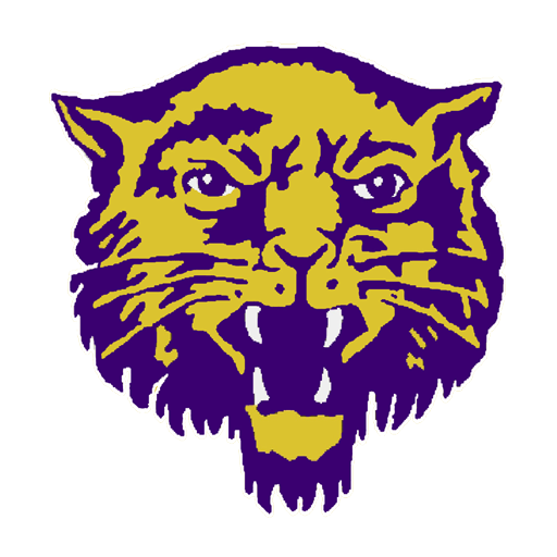 Image result for BOONEVILLE high school athletics