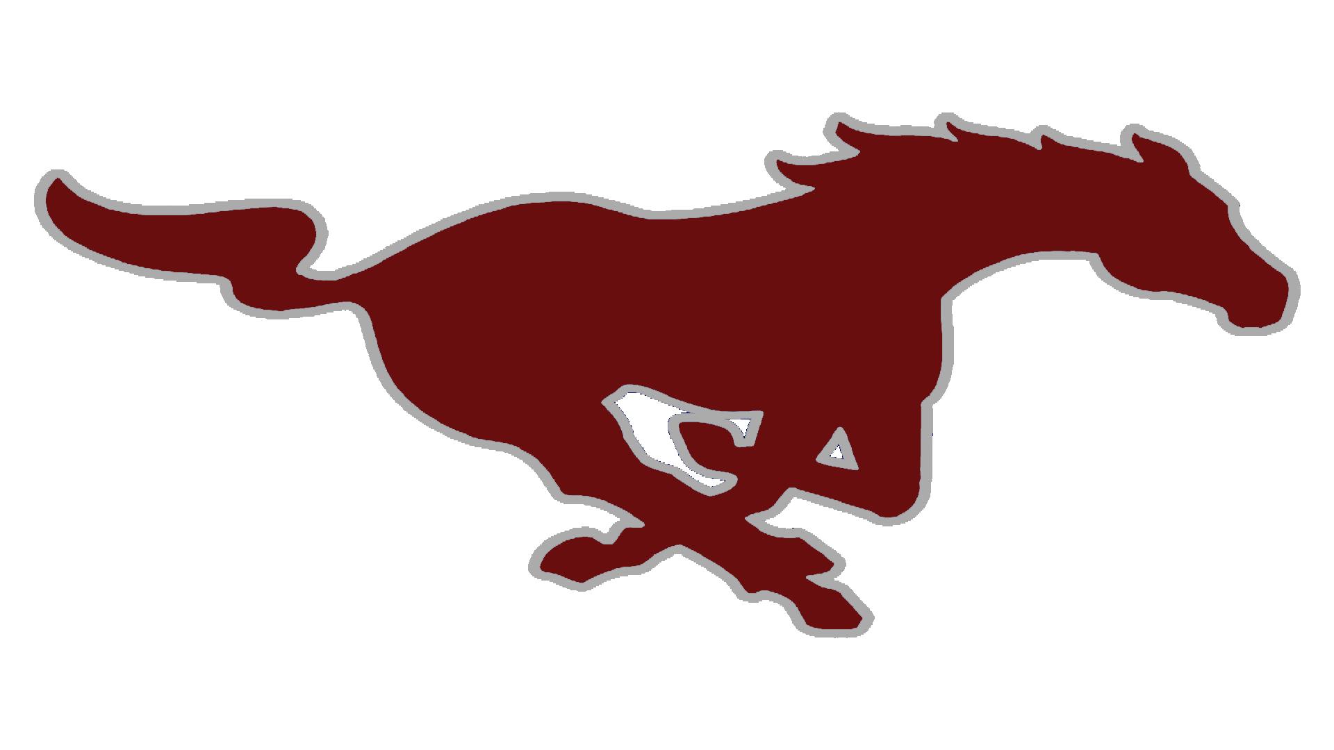100 mustang horse logo horse mustang bronco mascot