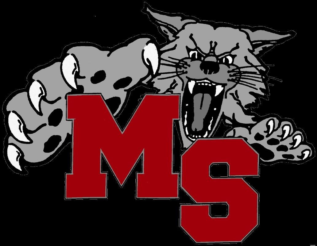 Image result for Mount Si logo