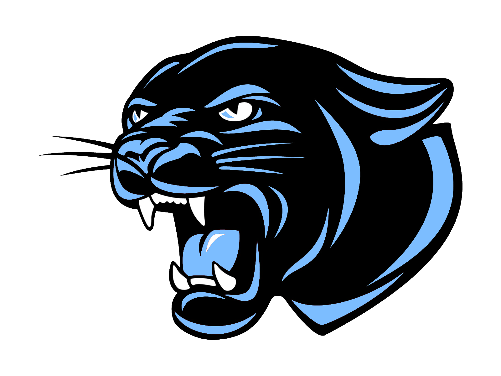 What Are The Panthers Score >> The Lincoln County Panthers - ScoreStream