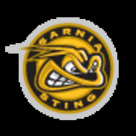 Sarnia Sting mascot