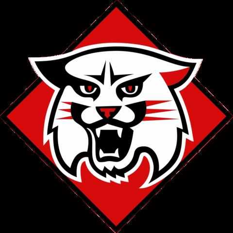 Davidson College mascot