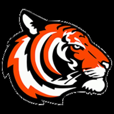 Oelrichs High School mascot