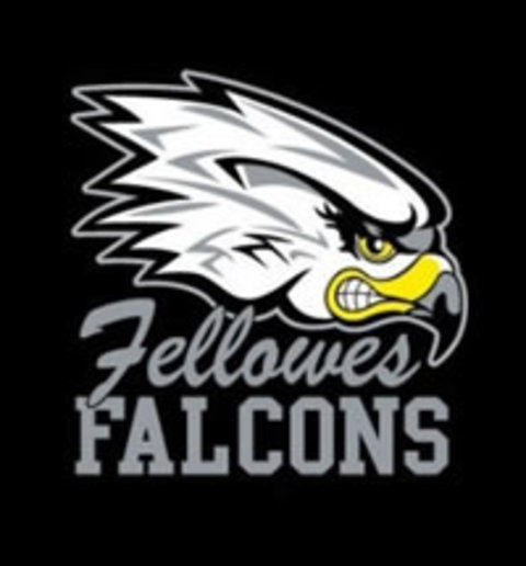 Fellowes High School mascot
