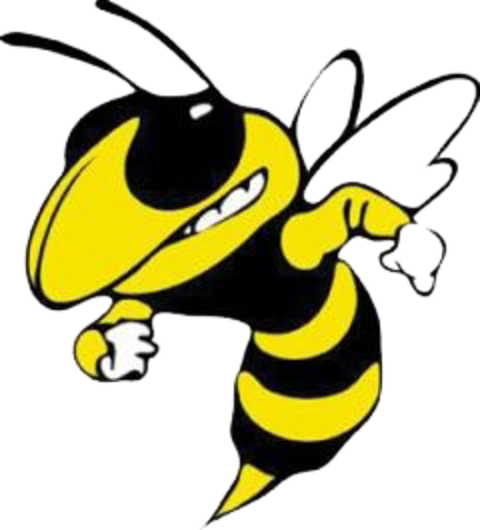 Calipatria High School mascot