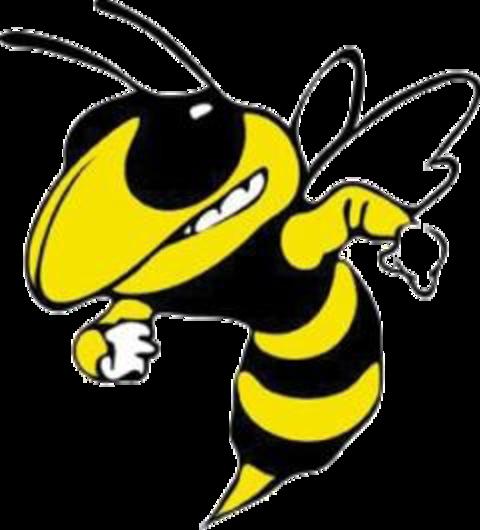 Calipatria High School mascot